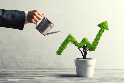 I migliori fondi per investire in dividendi